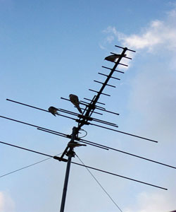 old analogue antenna